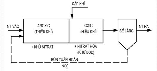 cách xử lý amonia trong nước thải sinh hoạt bằng phương pháp sinh học